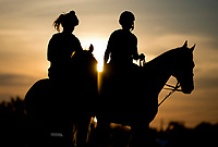 BALTIMORE, MD - MAY 18: A horse heads back from a busy track as preparations are in full swing for the Preakness Stakes this Saturday at Pimlico Race Course on May 18, 2017 in Baltimore, Maryland.(Photo by Scott Serio/Eclipse Sportswire/Getty Images)