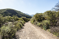 North Fork Matilija Trail in Los Padres National Forest, near Ojai, California.