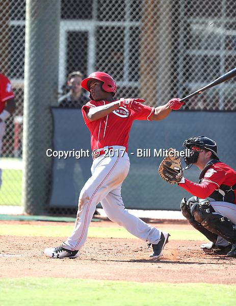 Jeter Downs - 2017 AIL Reds (Bill Mitchell)