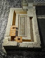 Roman latrine lavatory - Ancient Zeugama, 2nd - 3rd century AD . Zeugma Mosaic Museum, Gaziantep, Turkey.