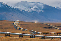 Trans Alaska oil pipeline crosses the tundra in the Brooks Range, Alaska.
