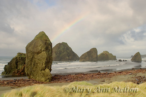 Horizontal image of a rainbow over the seastacks at Pistol Beach, Oregon