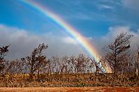 Rainbow over dry land on Maui