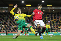 Kenny McLean of Norwich City and Andreas Pereira of Manchester United during the Premier League match between Norwich City and Manchester United at Carrow Road on October 27th 2019 in Norwich, England. (Photo by Matt Bradshaw/phcimages.com)<br /> Foto PHC/Insidefoto <br /> ITALY ONLY