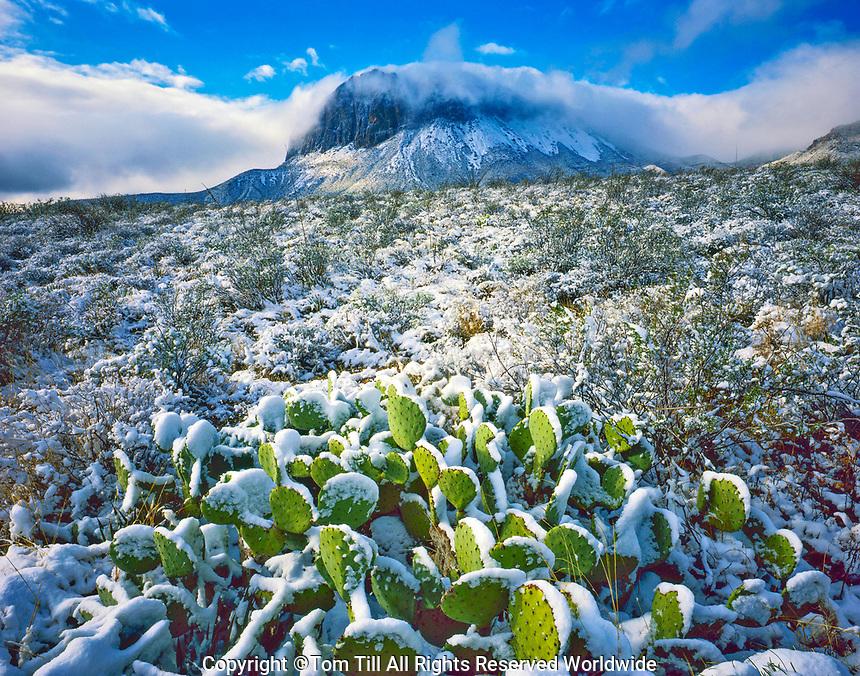 Rare Snow at Sunrise, Chisos Mountains, Big Bend National Park, Texas