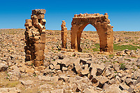 "Pictures of the the ruins of the 8th century University of  Harran, south west Anatolia, Turkey.  Harran was a major ancient city in Upper Mesopotamia whose site is near the modern village of Altınbaşak, Turkey, 24 miles (44 kilometers) southeast of Şanlıurfa. The location is in a district of Şanlıurfa Province that is also named ""Harran"". Harran is famous for its traditional 'beehive' adobe houses, constructed entirely without wood. The design of these makes them cool inside. 50"