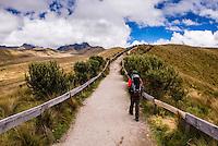 Hiker trekking up Rucu Pichincha Volcano, Quito, Pichincha Province, Ecuador, South America