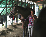 Trainer Aparna Battula walks Mo Mon's Copycat at Monmouth Park Racetrack Barn Area on Tuesday September 27, 2016.  Photo By Bill Denver/EQUI-PHOTO.