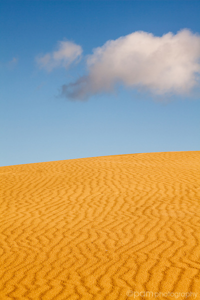 Wavy lines of sand dunes leading to blue sky with white puffy cloud