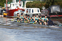 Race: 67  W.IM2.8+  [4]Ironbridge - IRO-Carvell vs [6]City of Swansea RC - CSW-Rance<br /> <br /> Gloucester Regatta 2017 - Sunday<br /> <br /> To purchase this photo, or to see pricing information for Prints and Downloads, click the blue 'Add to Cart' button at the top-right of the page.