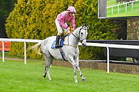 Artic Flower ridden by George Hook goes down to the  start of The Shadwell Racing Excellence Apprentice Handicap Div 1during Horse Racing at Salisbury Racecourse on 14th August 2019