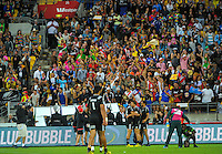 Fans celebrate NZ's last-gasp victory over South Africa in the cup final on day two of the 2016 HSBC Wellington Sevens at Westpac Stadium, Wellington, New Zealand on Sunday, 31 January 2016. Photo: Dave Lintott / lintottphoto.co.nz