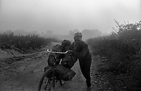 An unemployed person carries pirated coal to the local illigal coal market. Unemployment and poverty engage local people in illigal business of coal which is ruled by the coal mafias, Jharia, Jharkhand, India. Arindam Mukherjee