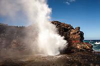 Nakalele Blowhole at Nakalele Pt., rugged north shore of Maui