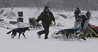 Nikolai volunteers help park Bjonar Anderson's dogs.