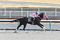 Horse racing in Aichi