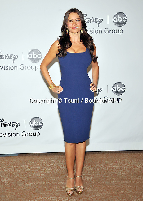 Sofia Vergara<br /> ABC - Disney_ tca party at the Beverly Hiton Hotel in Los Angeles.