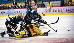 Philipp SCHLAGER (#62 Toelzer Loewen) \Bastian STEINGROSS (#26 Bietigheim Steelers) \Max PROMMERSBERGER (#3 Bietigheim Steelers) \ beim Spiel in der DEL2, Bietigheim Steelers (dunkel) -  Toelzer Loewen (gelb).<br /> <br /> Foto &copy; PIX-Sportfotos *** Foto ist honorarpflichtig! *** Auf Anfrage in hoeherer Qualitaet/Aufloesung. Belegexemplar erbeten. Veroeffentlichung ausschliesslich fuer journalistisch-publizistische Zwecke. For editorial use only.