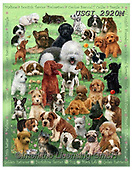 GIORDANO, CUTE ANIMALS, LUSTIGE TIERE, ANIMALITOS DIVERTIDOS,dogs, paintings+++++,USGI2920M,#ac#, EVERYDAY,puzzles