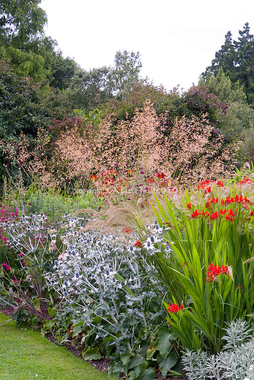 Beautiful flower border of perennials ornamental grass for Ornamental grass with red flowers