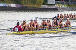 Rowing, Head of the Lake Regatta, November 5 2016, Seattle, Washington State, organized by the Lake Washington Rowing Club and the University of Washington, Washington State, Pacific Northwest, USA,