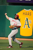 OAKLAND, CA - JULY 12:  Vladimir Guerrero of the Los Angeles Angels of Anaheim makes a throw from right field during the game against the Oakland Athletics at the McAfee Coliseum in Oakland, California on July 12, 2008.  The Angels defeated the Athletics 4-1.  Photo by Brad Mangin