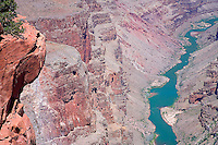 THE COLORADO RIVER WINDS ITS WAY THROUGH THE GRAND CANYON AT TOROWEAP OVERLOOK IN NORTHERN ARIZONA