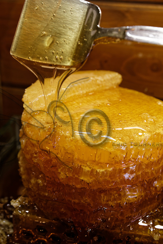 At the spice market in Istanbul, the shop Cankurtra Gida, like all the others in the market, offers tourists honeycombs as well as the country's rare honeys. The honey in a wax comb is highly prized in Turkey and the honey of Rize is very well-known. The Kara Kovan honey from Camlihemsin is harvested at the end of the month of July. The bees will have gathered nectar from the chestnut trees, bramble, rhododendron and pasture flowers for this honey.///Dans le marché aux épices d'Istanbul, la boutique Cankurtra Gida, comme toutes les épices fines du marché propose aux touristes des galettes de miel ainsi que les miels rares du pays. Le miel en rayon de cire est très prisé en Turquie et le miel de Rize est très réputé. Le miel de Kara Kovan de Camlihemsin est récolté a fois à la fin du mois de juillet. Les abeilles ont butiné des nectars de châtaigner, ronces, rhododendron et fleurs de pâturage pour ce miel.