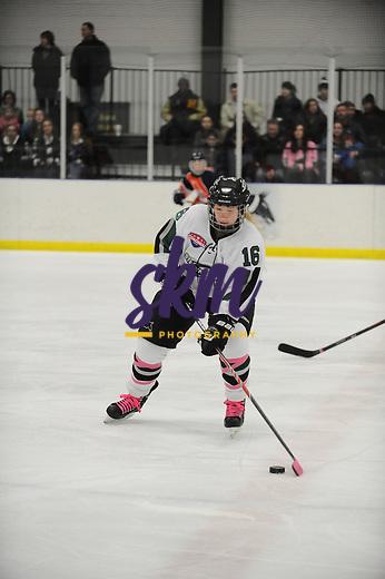 Stevenson's women's ice hockey shut out the Salem Vikings 4-0 Saturday evening at Reisterstown Sportsplex.
