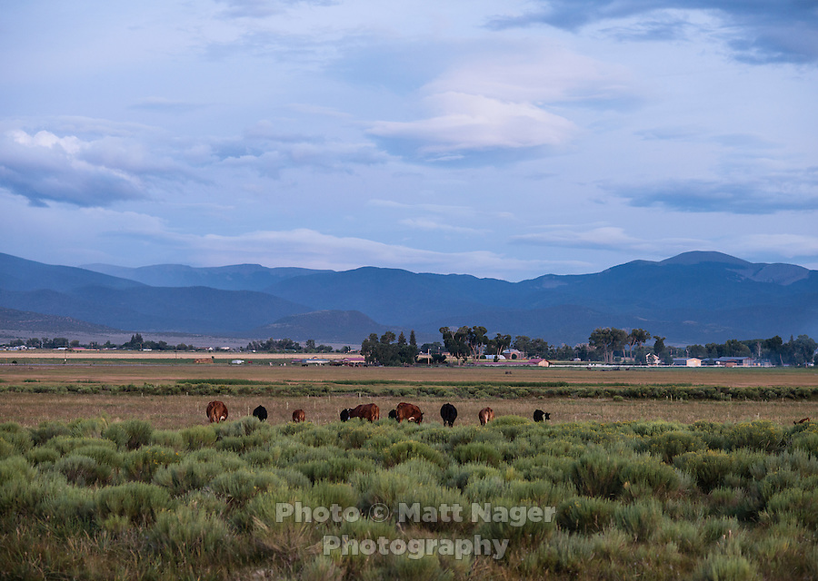 The San Luis Valley in Colorado, Monday, August 17, 2015. The People's Ditch, located in the town of San Luis, is the oldest continually used ditch in Colorado. The People's Ditch was initially a shallow hand-dug irrigation channel. Later, oxen pulling a plow widened and extended the ditch. Operating under Water District 24 of Division 3, the People's Ditch holds the first adjudicated water rights in Colorado.<br /> <br /> Photo by Matt Nager