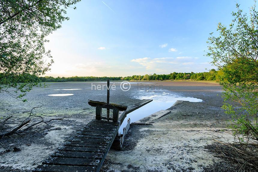 France, Loir-et-Cher (41), Sologne, Saint-Viâtre, étang du Mouet à sec // France, Loir et Cher, Sologne, Saint Viatre, pond Mouet dry