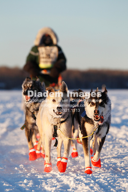 GRAND MARAIS, MN - FEBRUARY 1:  The sled dog team of Collen Wallin approaches the Devil Track checkpoint on the third day of the John Beargrease sled dog marathon February 1, 2011 in Grand Marais, Minnesota.  (Photograph by Jonathan P. Larsen)