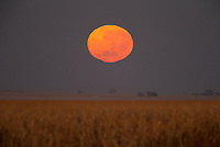 Moonset over the farmland surrounding Emas National Park.