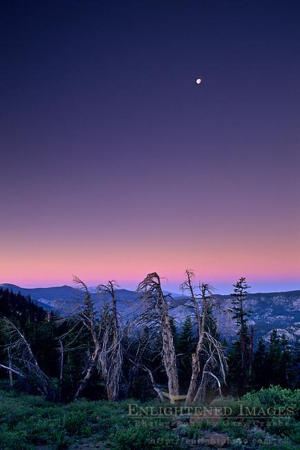 Dawn at Minaret Summit, near Mammoth Peak, Yosemite National Park, CALIFORNIA