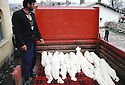 Turquie 1991.Tchoukourdja: Transport d'enfants kurdes morts sur la frontière turque.Turkey 1991.Tchoukourdja: Daed bodies of young Kurds.Kurdistan Turkey 1991.Tchucurdja: Transport of dead Kurdish bodies.. .