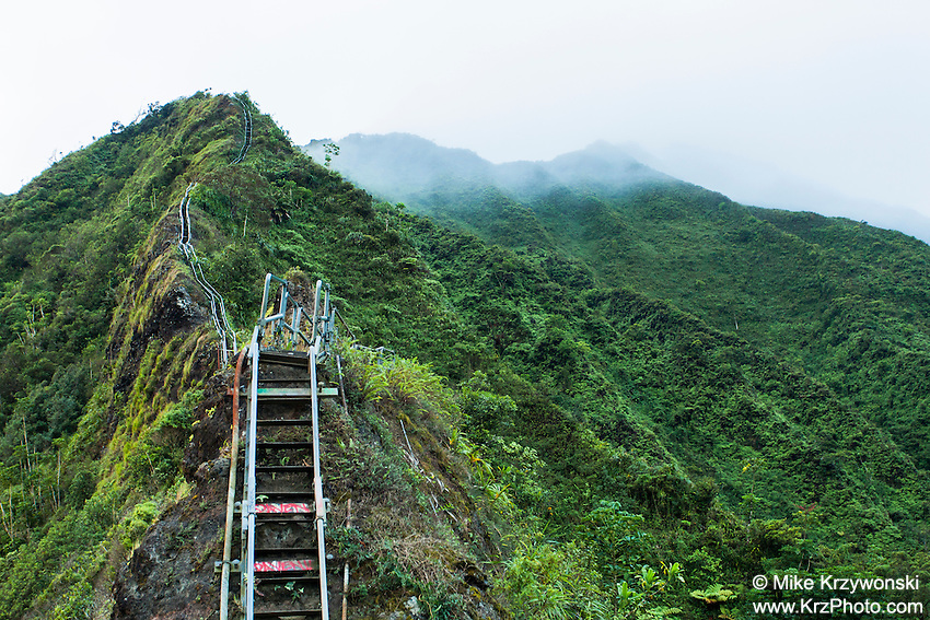 "Steps leading upward into the Ko'olau mountains on the Haiku Stairs (""Stairway to Heaven"") hiking trail in Kaneohe, Oahu"