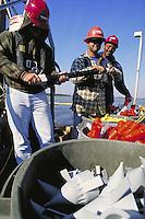 Employees of seismic vessel loading explosives on to boat. Employee of seismic vessel. Louisiana, Lake Salvador.