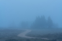 Waiting for the fog to lift to get a photograph of the Sawtooth Mountain Range.