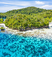 aerial view of a limestone island, surrounded by a coral reef, Raja Ampat Islands, West Papua, Indonesia, Pacific Ocean