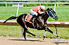 Southern Beach winning at Delaware Park on 7/17/13 - look at Vince posing