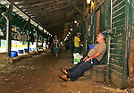New York Post Columnist John Crudele relaxes after working in the barn of Trainer Chuck Spina at Monmouth Park in Oceanport, New Jersey on Saturday July 9, 2016. Photo By Bill Denver/EQUI-PHOTO
