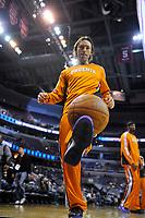 Steve Nash - Phoenix Suns<br /> <br /> Copyright Alan P. Santos
