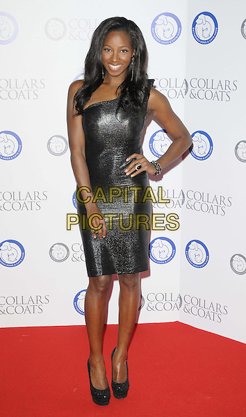 Jamelia (Jamelia Niela Davis).Attending the Battersea Dogs & Cats Home 'Collars & Coats Gala Ball 2012' held at Battersea Evolution, London, England, UK, 8th November 2012..full length black shiny dress one shoulder smiling hand on hip platform shoes .CAP/CAN.©Can Nguyen/Capital Pictures.