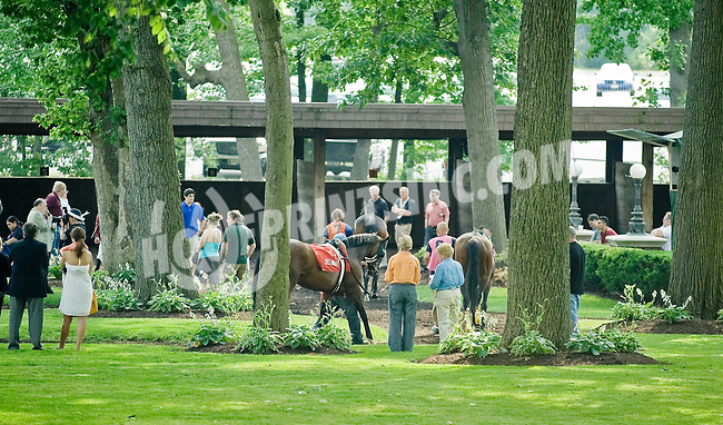 High Quality before The John W. Rooney Memorial Stakes at Delaware Park on 6/2/12