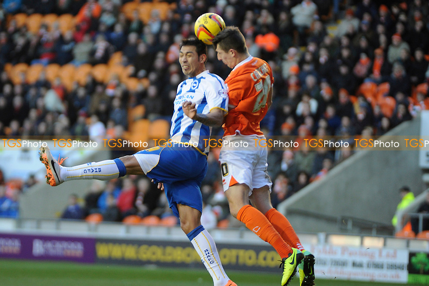 Leonardo Ulloa of Brighton and Hove Albion goes up for aerial header with Craig Cathcart of Blackpool - Blackpool vs Brighton & Hove Albion - Sky Bet Championship Football at Bloomfield Road, Blackpool, Lancashire - 29/12/13 - MANDATORY CREDIT: Greig Bertram/TGSPHOTO - Self billing applies where appropriate - 0845 094 6026 - contact@tgsphoto.co.uk - NO UNPAID USE