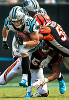 Photography of the Carolina Panthers v. The Cincinnati Bengals, at Bank of America Stadium in Charlotte, NC.<br /> <br /> Charlotte Photographer - Patrick Schneider