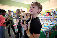 NWA Democrat-Gazette/DAVID GOTTSCHALK  Mathis Brady, a fifth grade student at McNair Middle School, holds Paco, a chihuahua, Thursday, March 15, 2018, during the Paws for Books Book Fair in the library at the school in Fayetteville. The school is hosted the 3rd annual Dog Party during their book fair to raise funds, adoption fee donations and pet items for the Fayetteville Animal Shelter. The first 50 students with dogs received natural dog treats from Nudges.