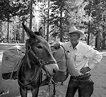 "Billy Butler gets ready to pack up for the trip back to Tuolumne Meadows.<br /> <br /> In August of 1987, the family and friends of Ansel Adams made a trip to Mount Ansel Adams to honor Ansel by putting his ashes on the mountain.  Leading the trip were Dr. Michael Adams and his wife, Jeanne, their son, Matthew, and daughter, Sarah.  Also in the group were Ansel's daughter, Anne Adams Helms, and her husband, Ken Helms, and Anne's daughters, Virginia (Ginny) Mayhew and Sylvia Mayhew Desin, and Sylvia's husband, Greg Desin.  Other members of the trip were Roger and Mitzi Hall, Matt Weston, Mrs. Desin (Greg's mother), and Billy Butler.  The Adams family invited me along with Leo Stutzin (Modesto Bee reporter) and my eldest son, Aaron Golub.  <br /> <br /> With some of us on horseback and others on foot, we began the hike at Tuolumne High Sierra Camp and headed to Vogelsang High Sierra Camp for the first night out.  The second day, we began by climbing through Vogelsang Pass, then descended by switchback down to Lewis Creek.  After climbing up from the creek we hiked by the Cony Crags before descending into the Lyell Fork of the Merced River ending up near Hutchings Creek at what is now referred to as the Ansel Adams Camp.  <br /> <br /> This camp was originally known generically as a Sierra Club Camp, but has more recently been referred to as Ansel Adams Camp because in 1934, Ansel led a Sierra Club outing to the Lyell Fork of the Merced River.  After the group climbed the then-unnamed peak that Adams called ""The Tower in Lyell Fork,"" they gathered around the campfire and agreed that the peak should bear Ansel's name.  The U.S. Geological Survey does not, however, permit naming features for living individuals, so the peak did not officially become Mt. Ansel Adams until 1985, one year and one day after his death.  Photo by Al Golub/Golub Photography"