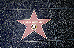 California: Los Angeles, Hollywood, Stars names on sidewalks, Robin Williams, Photo  camovi102.Photo copyright Lee Foster, 510/549-2202, lee@fostertravel.com, www.fostertravel.com