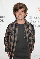 29 October 2017 - Culver City, California - Preston Bates. Elizabeth Glaser Pediatric AIDS Foundation's 28th Annual 'A Time For Heroes' Family Festival helming at Smashbox Studios. Photo Credit: F. Sadou/AdMedia